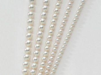 Filo di perle Miluna I Fili Di Perle Akoya 1MAU556