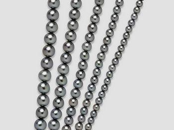 Filo di perle nero Miluna I Fili Di Perle Regina 1MPI011