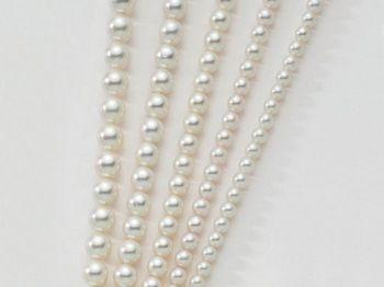 Filo di perle Miluna I Fili Di Perle Regina 1MPX445